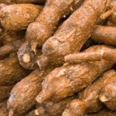 tapioca cassave.jpg