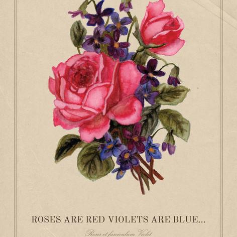 Rose Arangment