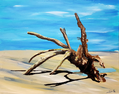 the swept away tree stands at low tide,