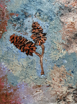 Daniel_gather_pinecones_in_the_wood_and_