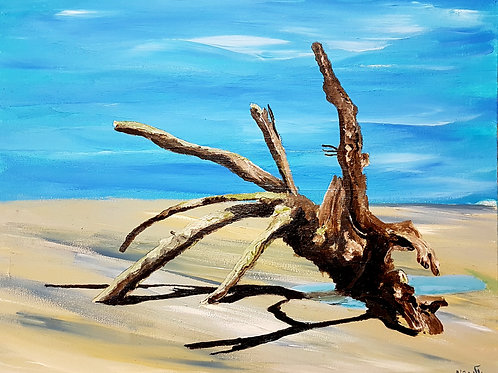 the swept away tree stands at low tide, in a gushy sand