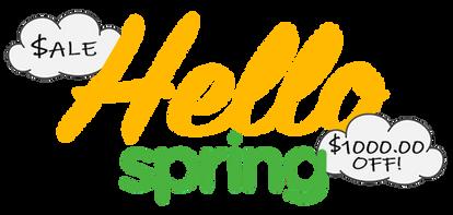 HelloSpring NEV Neighborhood Electric Vehicle Sale