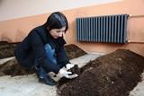 Üniversitenin vermikompost projesine Bakanlıktan tam destek
