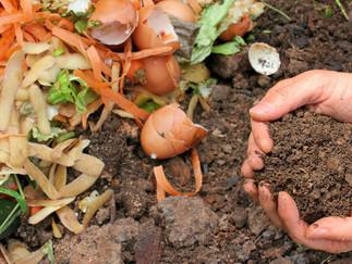 Evde kendi organik gübrenizi hazırlayabilirsiniz!