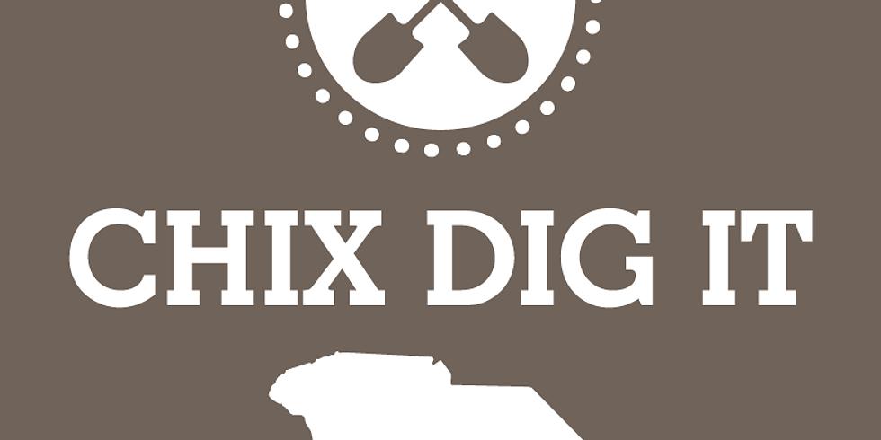 Chix Dig It Luncheon, Greenville, South Carolina