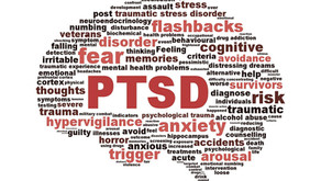 Preview: The Impact of Neurofeedback on PTSD - A Case Study