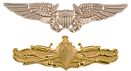 NFO-SWO wings-pin.png