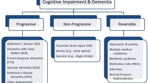 The Broad Categories the Define Dementia