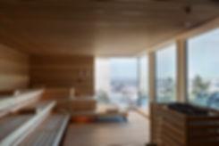 alpine-spa_wet-area_panoramic-sauna.jpg
