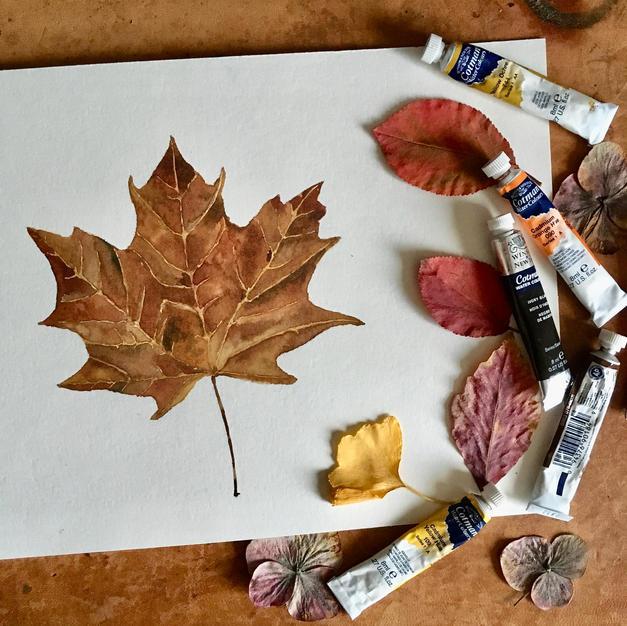 Mapple Tree Leaf