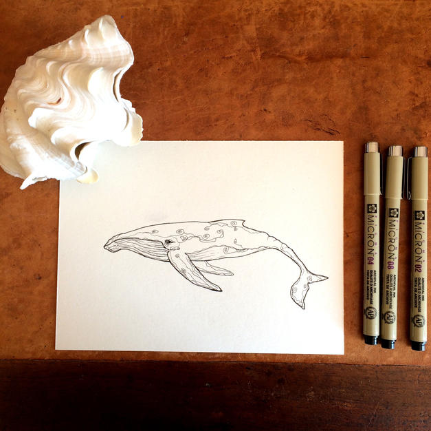 Whale - lineart sketch