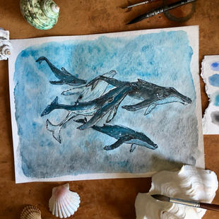 Whales travelling