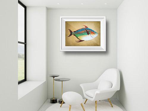 framed vintage opah fish poster by David Richard designs.