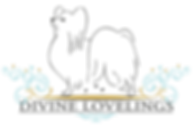 bala---nyt-logo_turkis.png