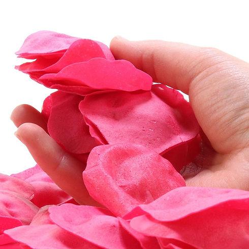 rosesds.jpg