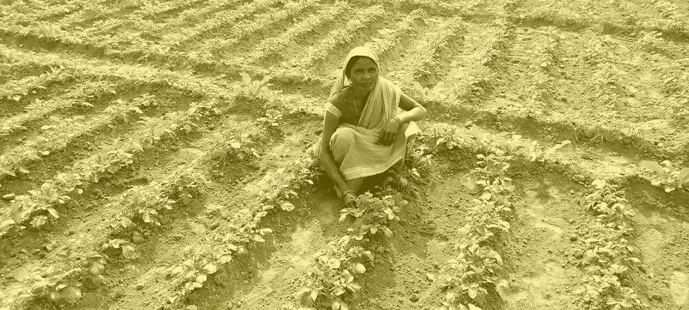INDIA-COVID-TRANSITIONAL-the%20beneficia