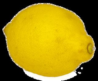 lemon-2615308_960_720.png