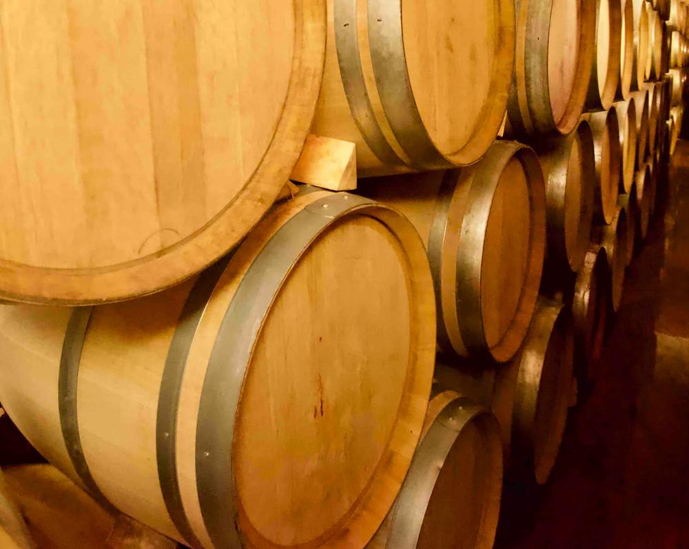 Oak barrels used in modern winemaking