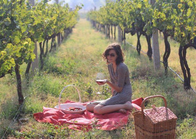 SDU Winery