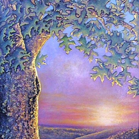 Enchanted Oak