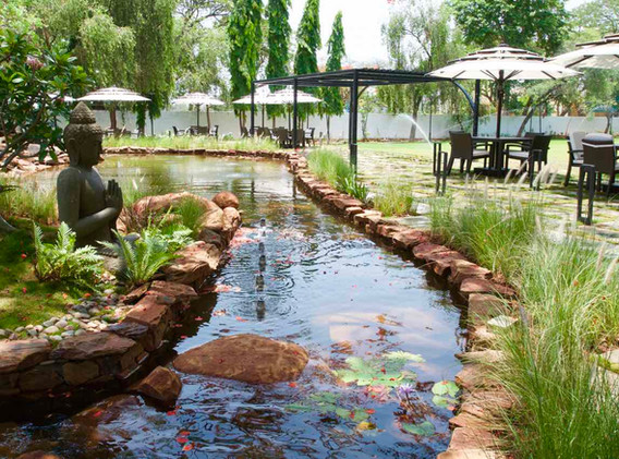 Koi pond infront of the lounge and restautant