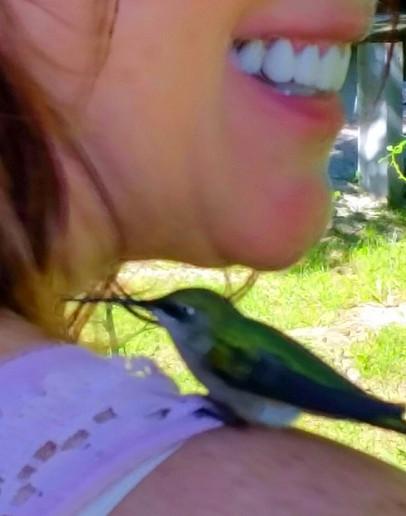 My little hummer friend!!