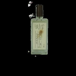 50ml flat bottle.png