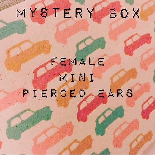 Mystery box! Female, mini