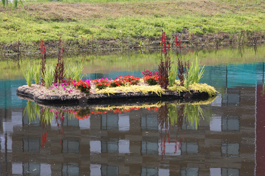 TI-Planted-with-Annuals.jpg