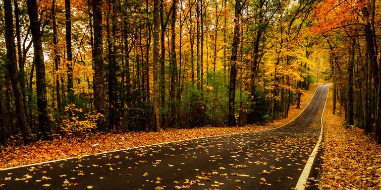 Fall On KY RT 715
