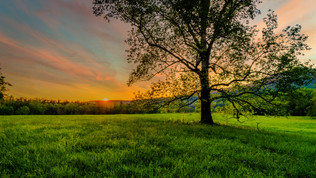 Spring Sunset At Cades Cove