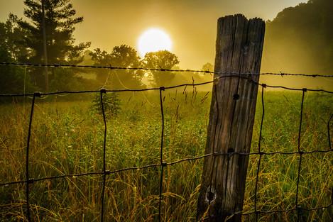 Wolfe County Dawn