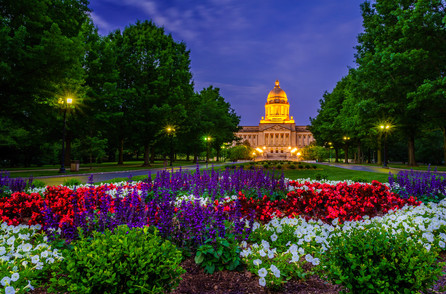 Capitol Before Dawn
