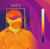 covid website temperature scanning.png