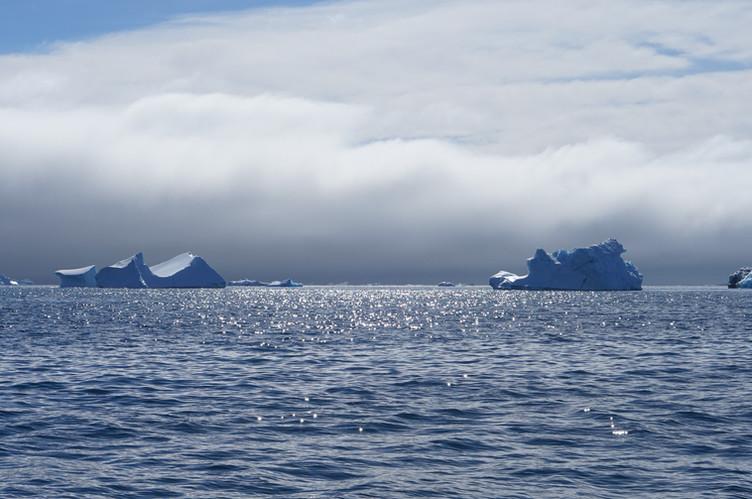 icebergs fog east greenland