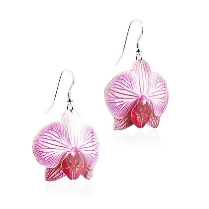 Phalaenopsis Orchid Earrings