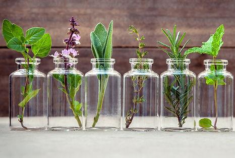 naturopathic-consultations.jpg