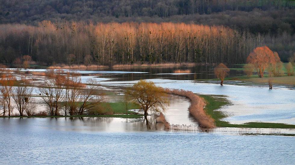 flood-4974510.jpg