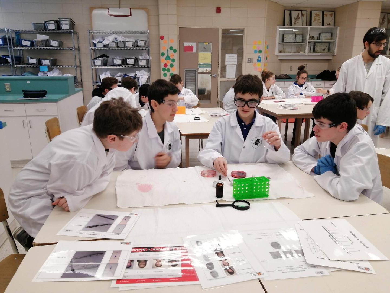 École de l'Envol - Photo de Sciences