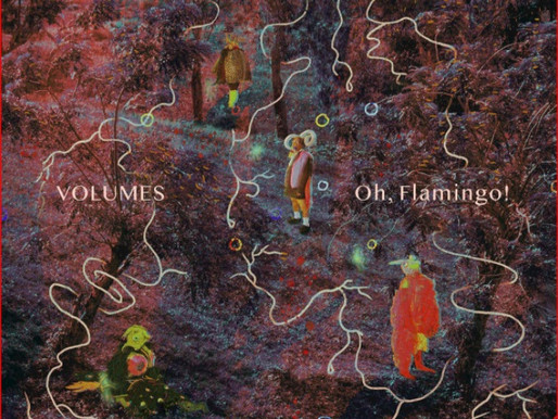 Oh, Flamingo! - 'Volumes'