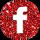 Facebook Fan Page of Eeva Lancaster