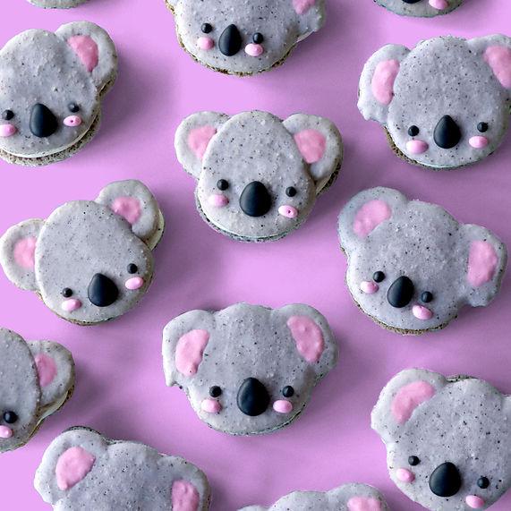 koala-macarons-s.jpg