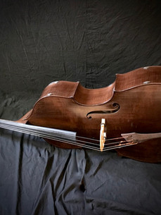 Resting Double Bass Violin