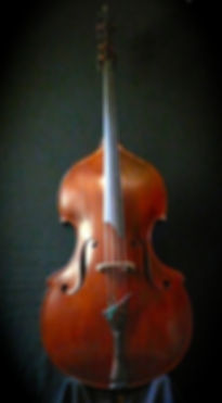 image of Orchestral Busetto Bass©2016 by Seth Kimmel  Bass maker/luthier of American made, real wood, hand-carved, double bass violins; Eugene, Oregon, USA
