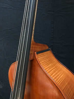 Shoulder View of a Double Bass ©2020 by Seth Kimmel: Maker of real wood double bass violins and 'cellos; Made in America in Eugene, Oregon.
