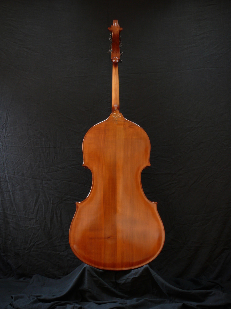 Back View of Flat Back Double Bass
