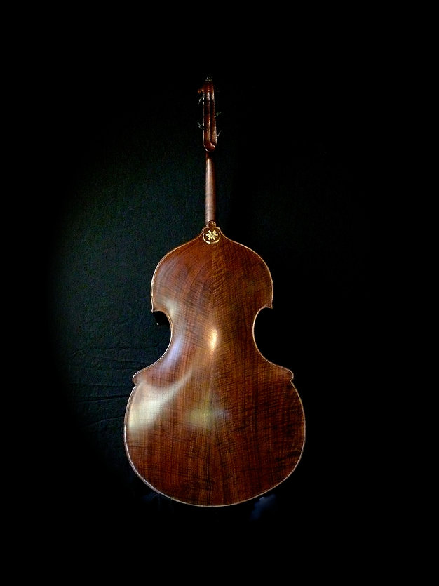 image of walnut Busetto back ©2017 by Seth Kimmel  Bass Violins maker/luthier of American made, real wood, hand-carved, double bass violins; Eugene, Oregon, USA