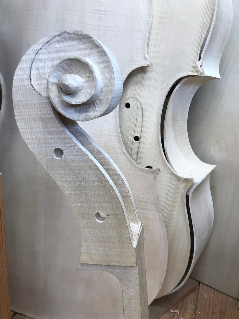 Parts of a Double Bass Violion Ready to Assemble