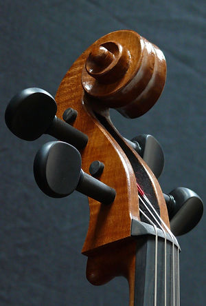 Seth Kimmel 'cello #5 hand carved scroll front view