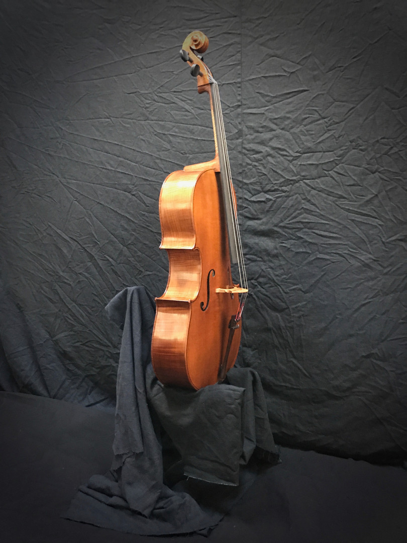 'Cello on A Throne--It's just so cute!
